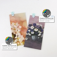 Carte olfactive